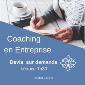 coaching entreprise 1 300x300 - Coaching professionnel